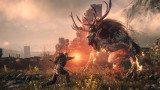 2457637-the_witcher_3_wild_hunt_geralt_vs_fiend (Custom)