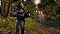 Elder Scrolls Online 6