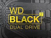 WD Black2 Feat
