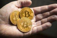 bitcoins 800 x 536