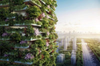 China to Fight Pollution with Vertical Forests