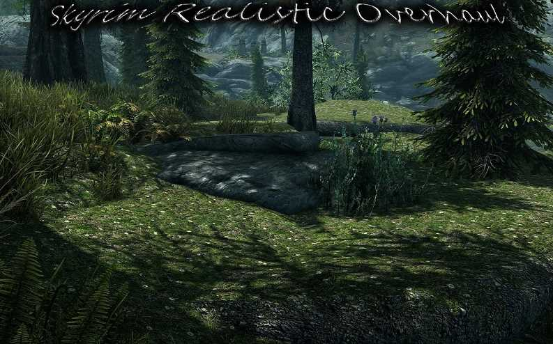 Skyrim Realistic Overhaul Updated - 10GB of Gorgeous Textures!