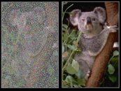 NVIDIA Researchers Show Off Impressive AI Photo-Retouching