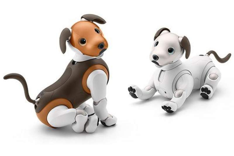 Sony Announces Limited Edition 'Chocolate' Aibo Robot Dog