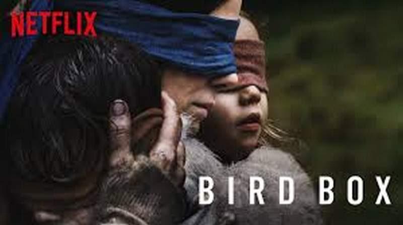 Netflix Pleads for Fans to Stop Dangerous 'Bird Box' Challenge