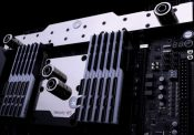 EKWB Releases Water Blocks for ASUS Dominus Motherboard