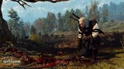 The Witcher 3 - Wild Hunt Screenshot