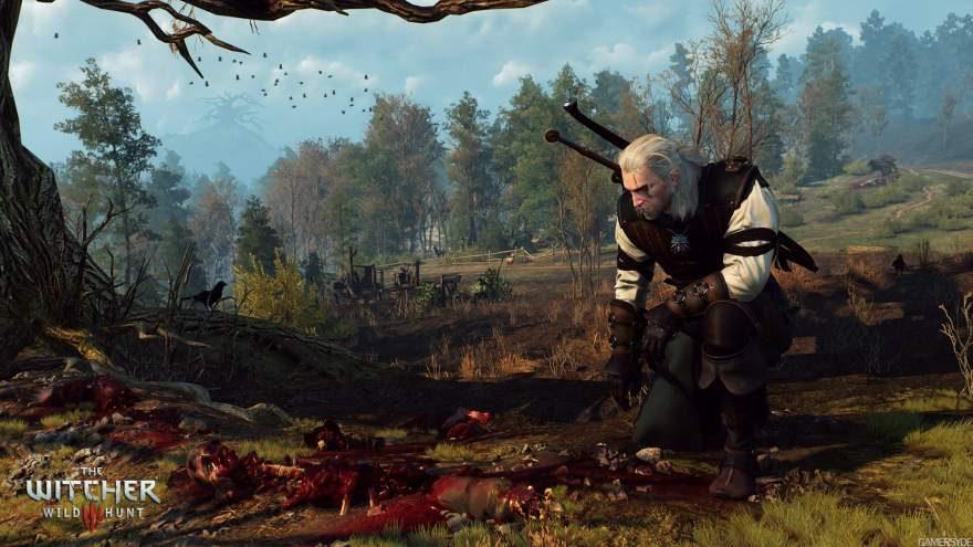 The Witcher 3 - Wild Hunt Screenshot