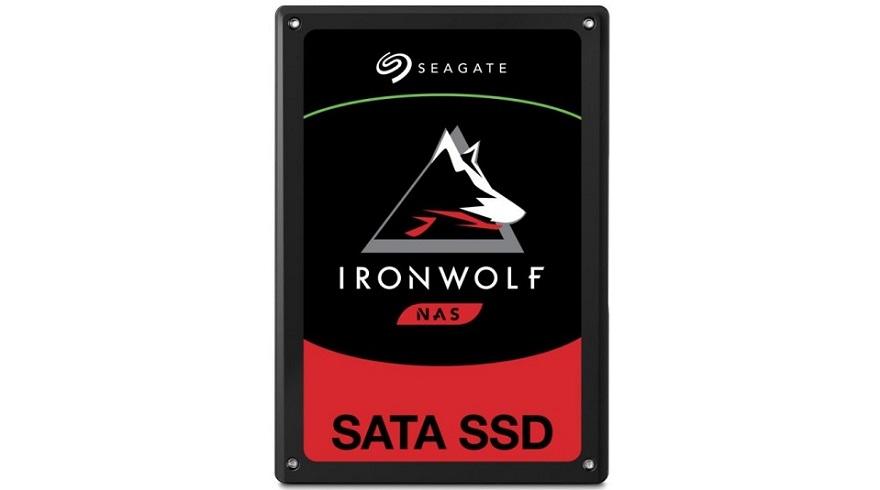 seagate ironwolf 110 ssd